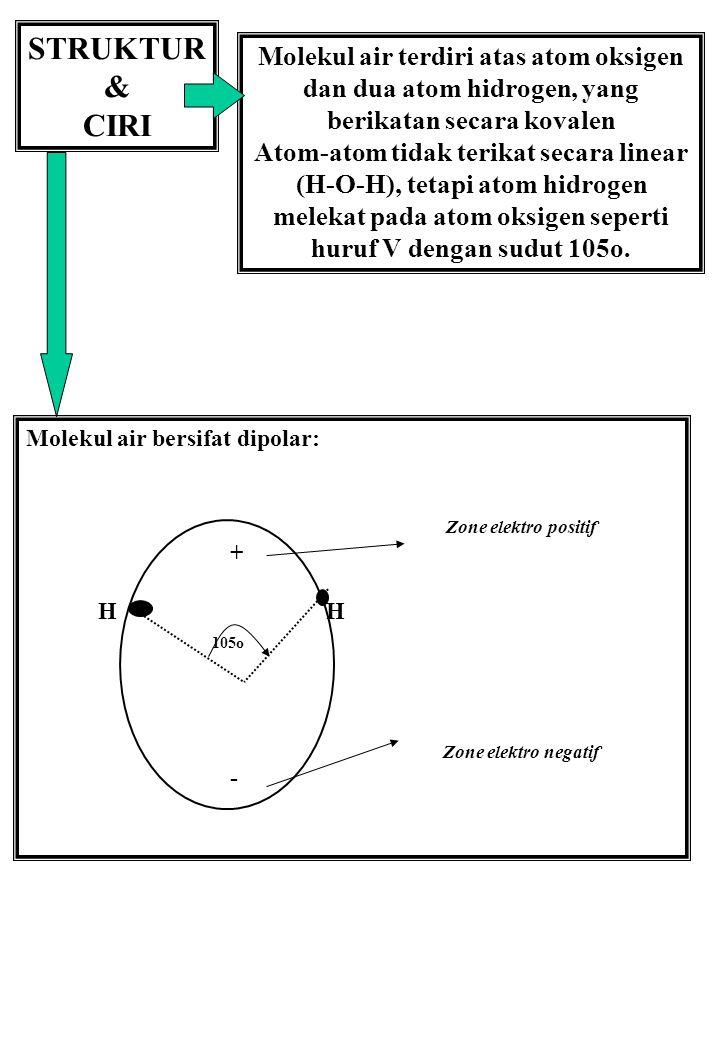STRUKTUR & CIRI Molekul air terdiri atas atom oksigen dan dua atom hidrogen, yang berikatan secara kovalen Atom-atom tidak terikat secara linear (H-O-