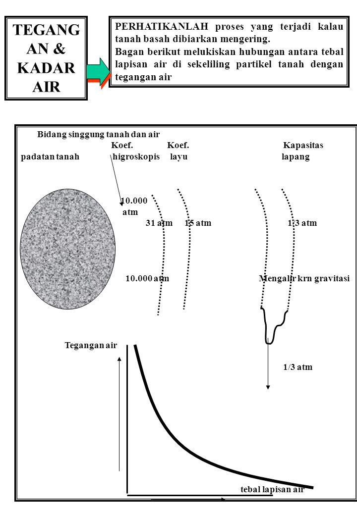 TEGANG AN & KADAR AIR PERHATIKANLAH proses yang terjadi kalau tanah basah dibiarkan mengering. Bagan berikut melukiskan hubungan antara tebal lapisan
