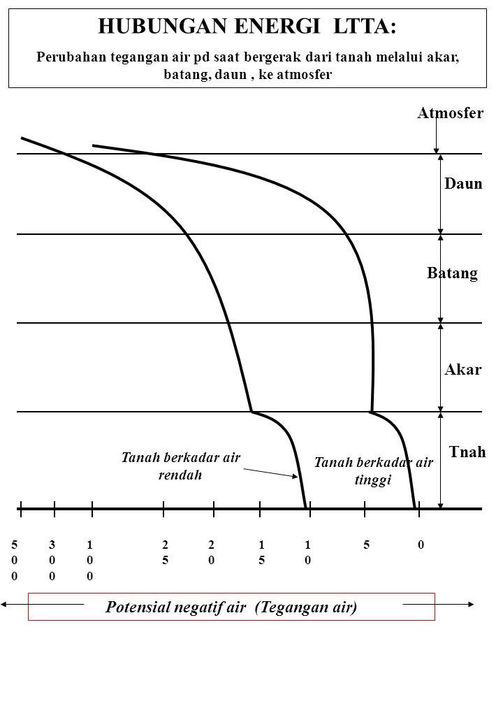 HUBUNGAN ENERGI LTTA: Perubahan tegangan air pd saat bergerak dari tanah melalui akar, batang, daun, ke atmosfer Potensial negatif air (Tegangan air)
