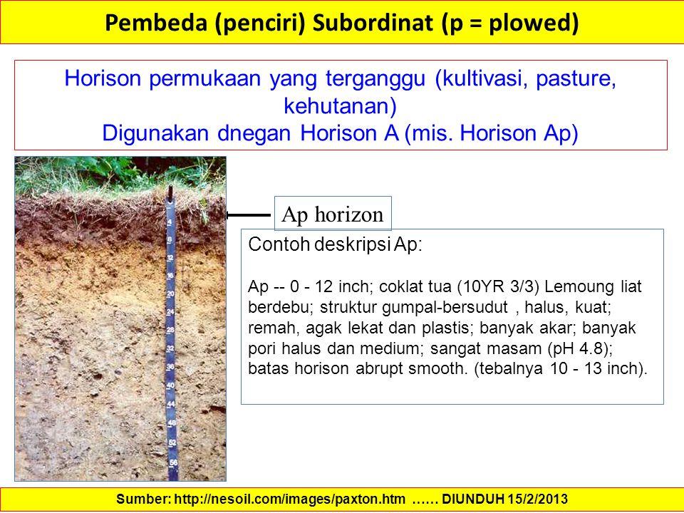 Pembeda (penciri) Subordinat (p = plowed) Horison permukaan yang terganggu (kultivasi, pasture, kehutanan) Digunakan dnegan Horison A (mis. Horison Ap