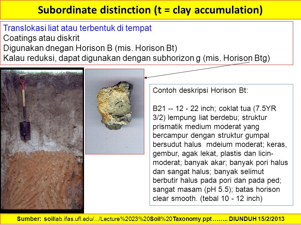 Subordinate distinction (t = clay accumulation) Translokasi liat atau terbentuk di tempat Coatings atau diskrit Digunakan dnegan Horison B (mis. Horis