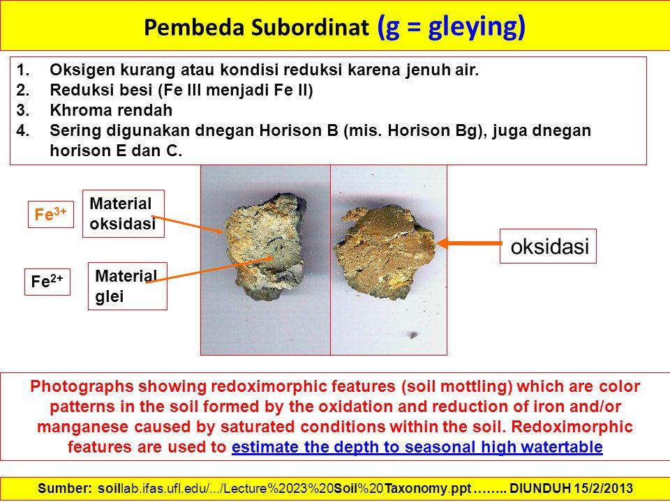 Pembeda Subordinat (g = gleying) 1.Oksigen kurang atau kondisi reduksi karena jenuh air. 2.Reduksi besi (Fe III menjadi Fe II) 3.Khroma rendah 4.Serin