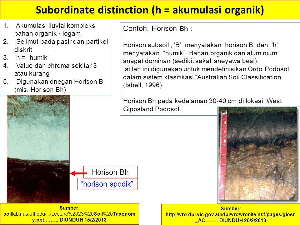 Subordinate distinction (h = akumulasi organik) 1. Akumulasi iluvial kompleks bahan organik - logam 2. Selimut pada pasir dan partikel diskrit 3. h =