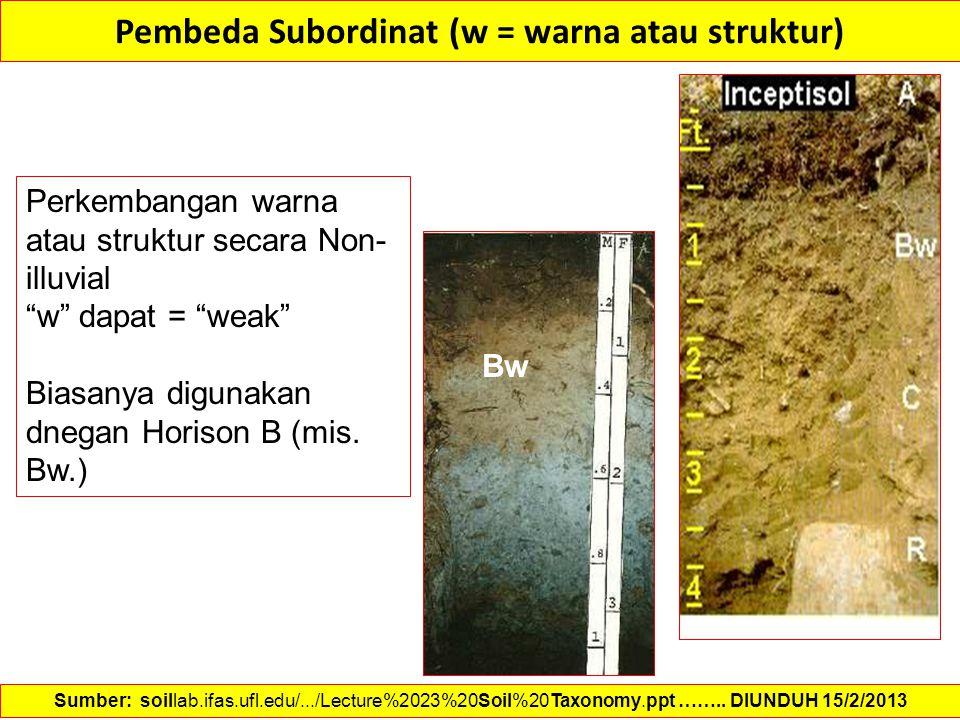 """Pembeda Subordinat (w = warna atau struktur) Perkembangan warna atau struktur secara Non- illuvial """"w"""" dapat = """"weak"""" Biasanya digunakan dnegan Horiso"""