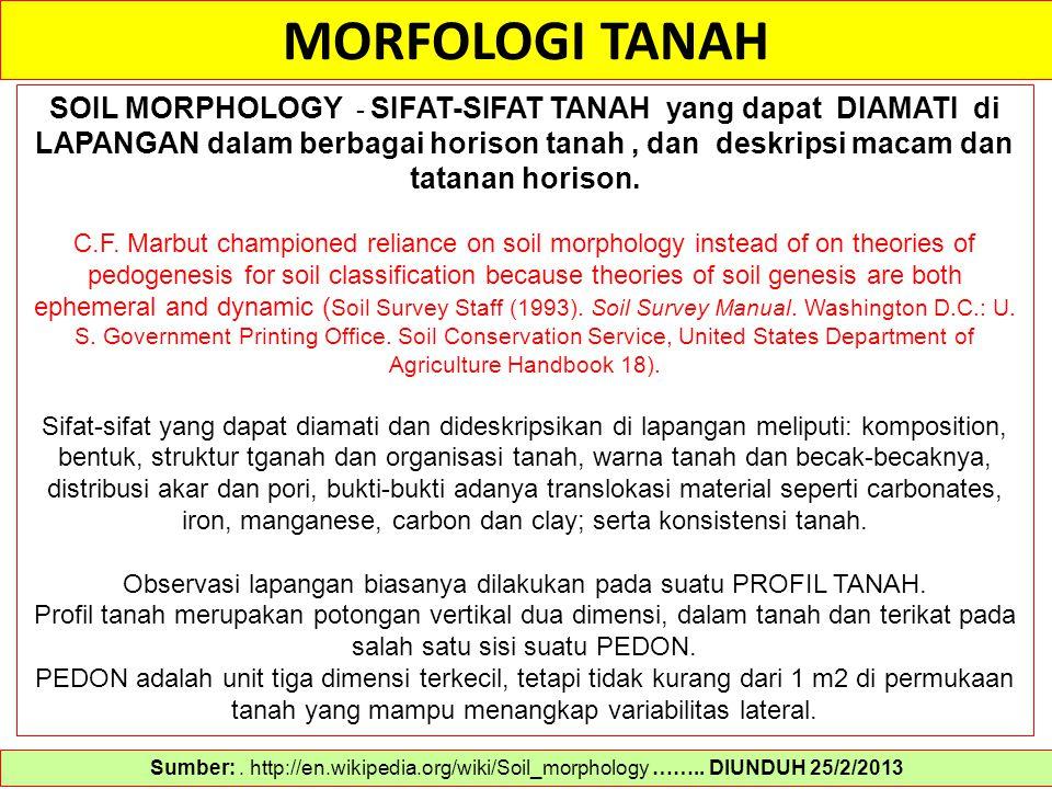 MORFOLOGI TANAH Sumber:. http://en.wikipedia.org/wiki/Soil_morphology …….. DIUNDUH 25/2/2013 SOIL MORPHOLOGY - SIFAT-SIFAT TANAH yang dapat DIAMATI di