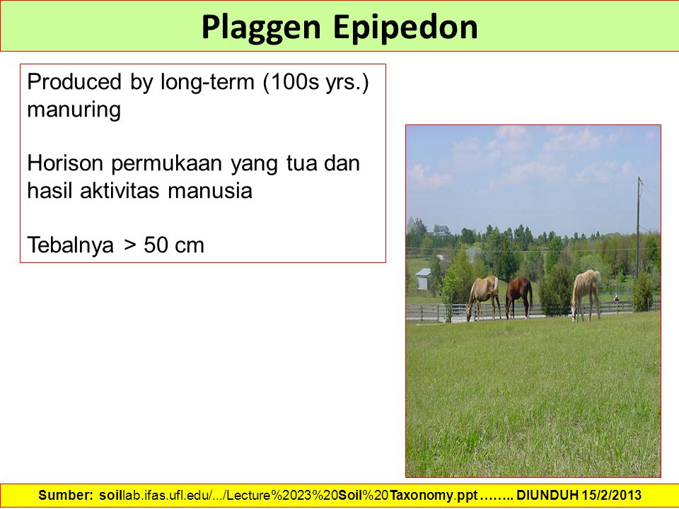 Plaggen Epipedon Produced by long-term (100s yrs.) manuring Horison permukaan yang tua dan hasil aktivitas manusia Tebalnya > 50 cm Sumber: soillab.if
