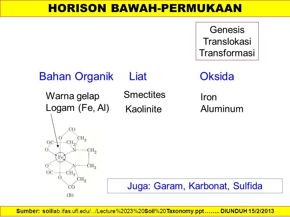 Bahan Organik Liat Oksida Smectites Kaolinite Juga: Garam, Karbonat, Sulfida Warna gelap Logam (Fe, Al) Iron Aluminum Genesis Translokasi Transformasi