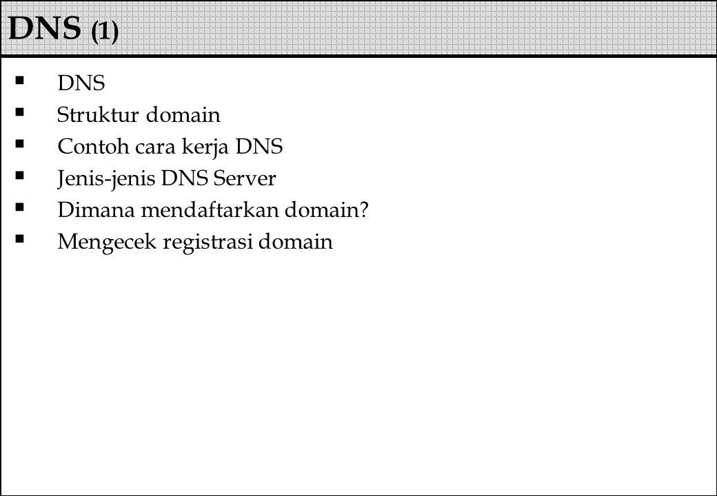  DNS  Struktur domain  Contoh cara kerja DNS  Jenis-jenis DNS Server  Dimana mendaftarkan domain?  Mengecek registrasi domain DNS (1)