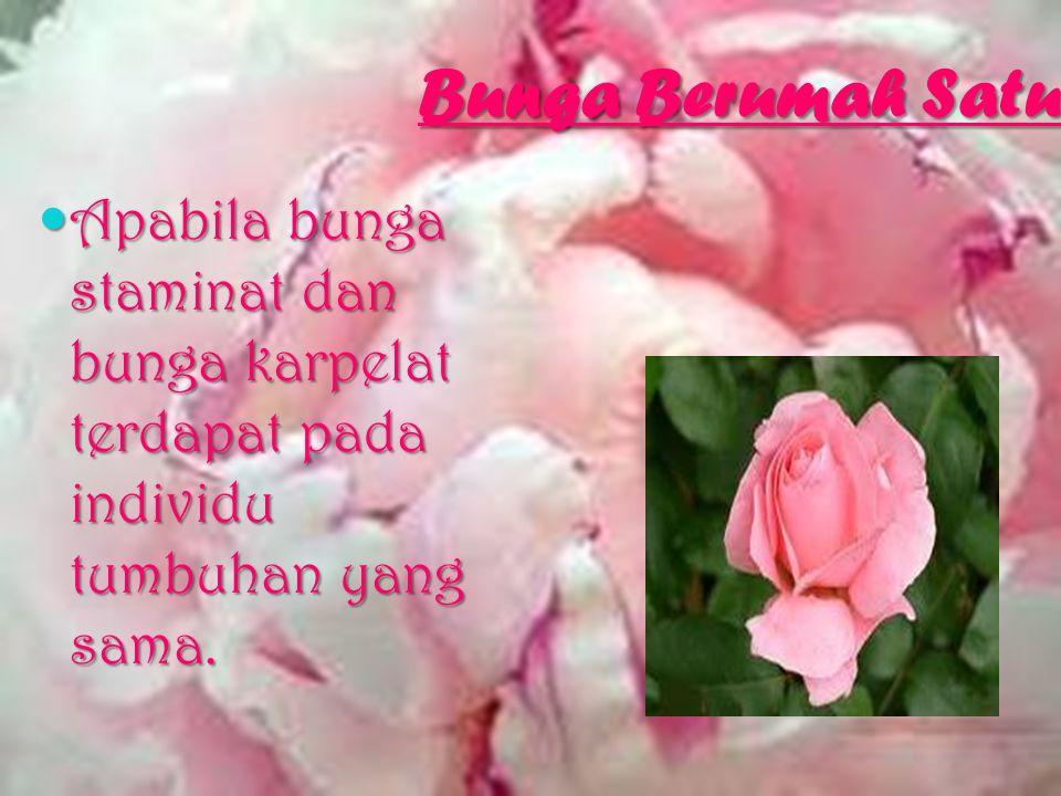 Bunga Tak Sempurna Bunga yang tak memiliki benang sari atau putik. Bunga yang tak memiliki benang sari atau putik.