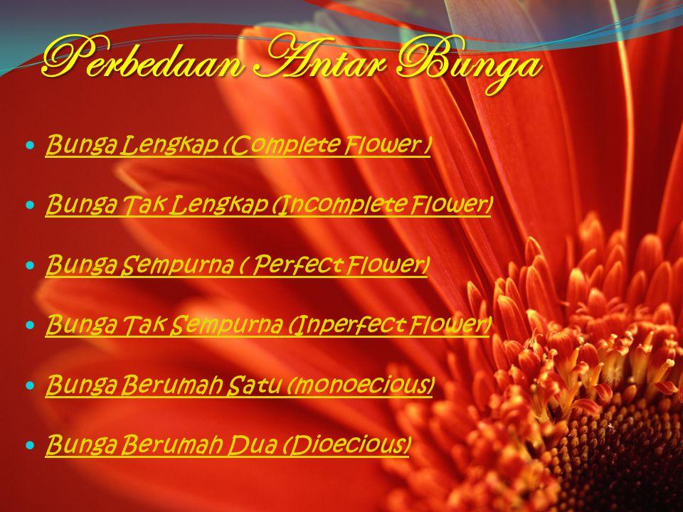 Perbedaan Antar Bunga Bunga Lengkap (Complete Flower ) Bunga Tak Lengkap (Incomplete Flower) Bunga Sempurna ( Perfect Flower) Bunga Tak Sempurna (Inperfect Flower) Bunga Berumah Satu (monoecious) Bunga Berumah Dua (Dioecious)