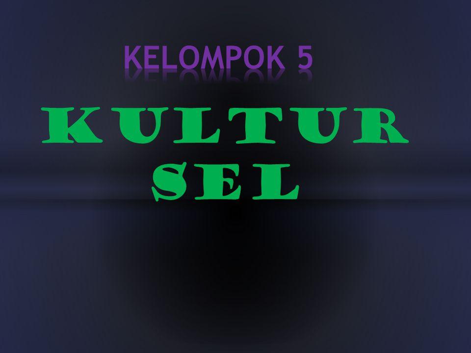 KULTUR SEL