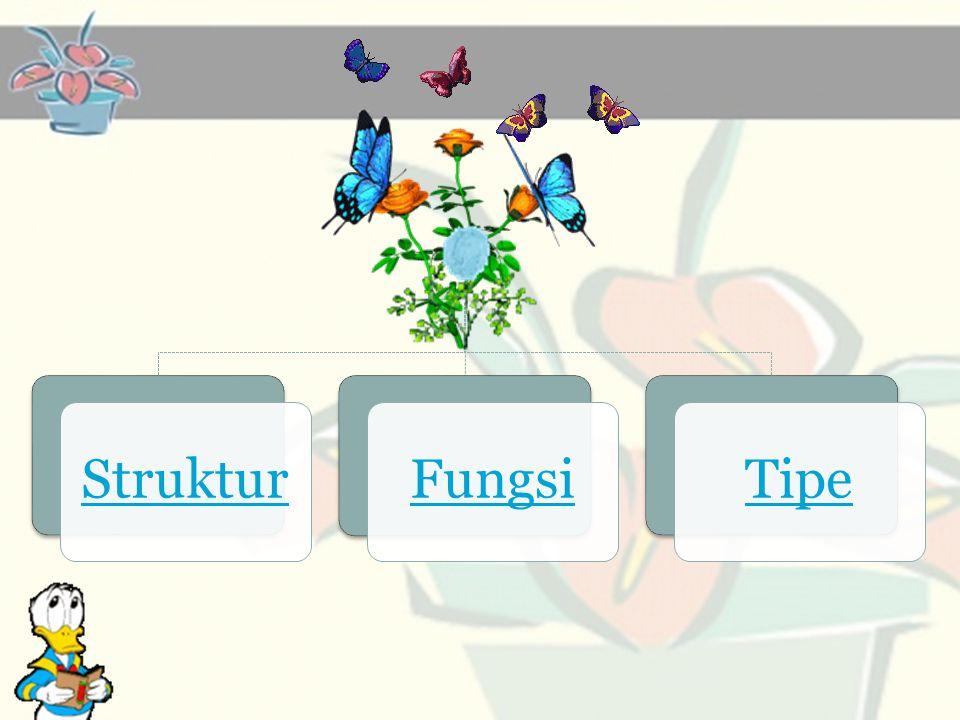 1.Alat Kelamin Bunga a. Pistillum b. Stament 2. Dasar bunga (reseptakel) 3.