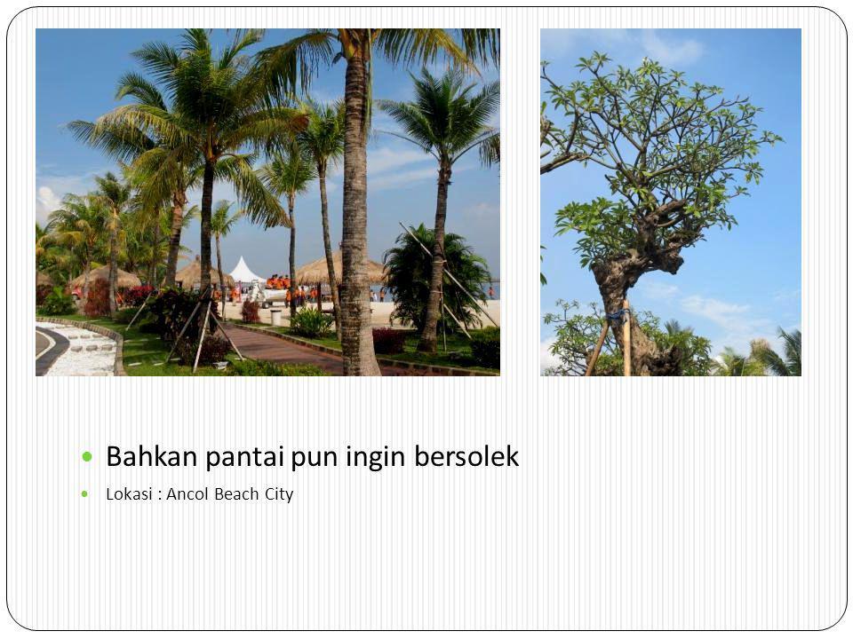 Bahkan pantai pun ingin bersolek Lokasi : Ancol Beach City