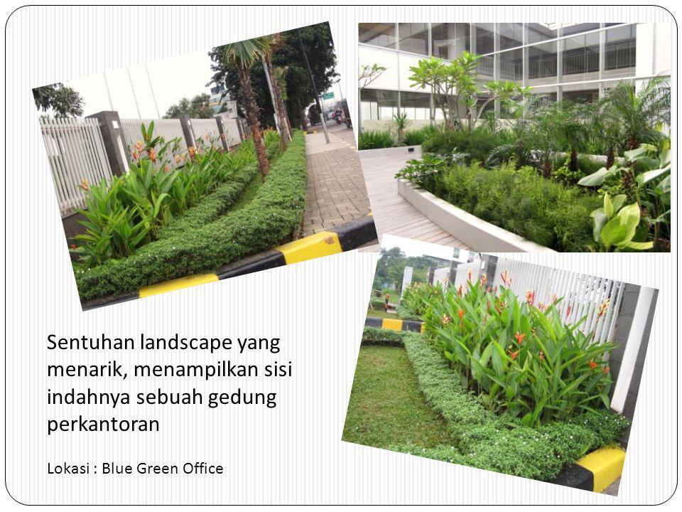 Sentuhan landscape yang menarik, menampilkan sisi indahnya sebuah gedung perkantoran Lokasi : Blue Green Office