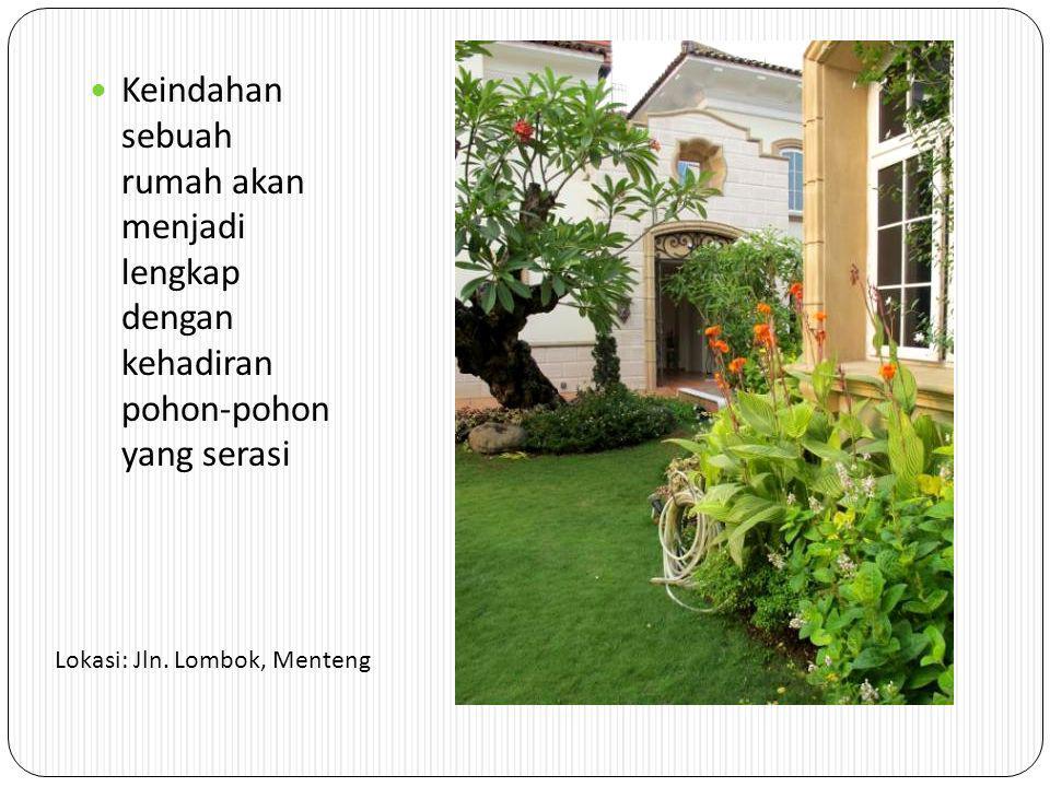 Keindahan sebuah rumah akan menjadi lengkap dengan kehadiran pohon-pohon yang serasi Lokasi: Jln.