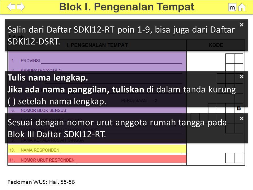 100% Sesuai dengan nomor urut anggota rumah tangga pada Blok III Daftar SDKI12-RT. Blok I. Pengenalan Tempat m Pedoman WUS: Hal. 55-56 Salin dari Daft