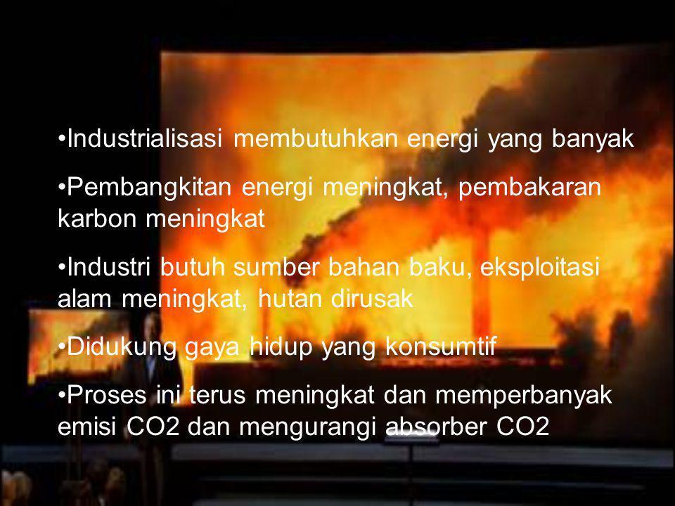 Industrialisasi membutuhkan energi yang banyak Pembangkitan energi meningkat, pembakaran karbon meningkat Industri butuh sumber bahan baku, eksploitas