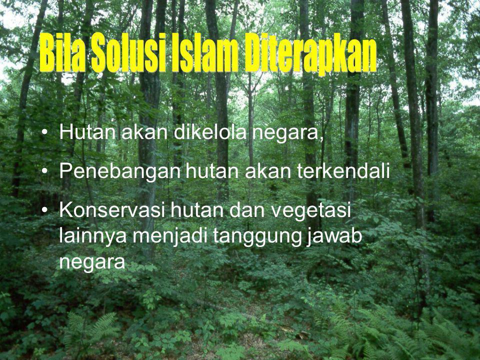 Hutan akan dikelola negara, Penebangan hutan akan terkendali Konservasi hutan dan vegetasi lainnya menjadi tanggung jawab negara