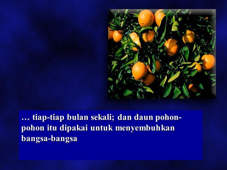 Wahyu 22:2 Di tengah-tengah jalan kota itu, yaitu di seberang-menyeberang sungai itu, ada pohon- pohon KEHIDUPAN yang berbuah dua belas kali, … Di ten
