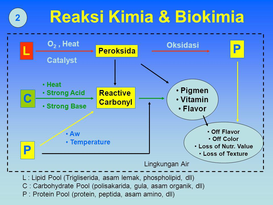 2 Reaksi Kimia & Biokimia L C P Peroksida Reactive Carbonyl Pigmen Vitamin Flavor Off Flavor Off Color Loss of Nutr.
