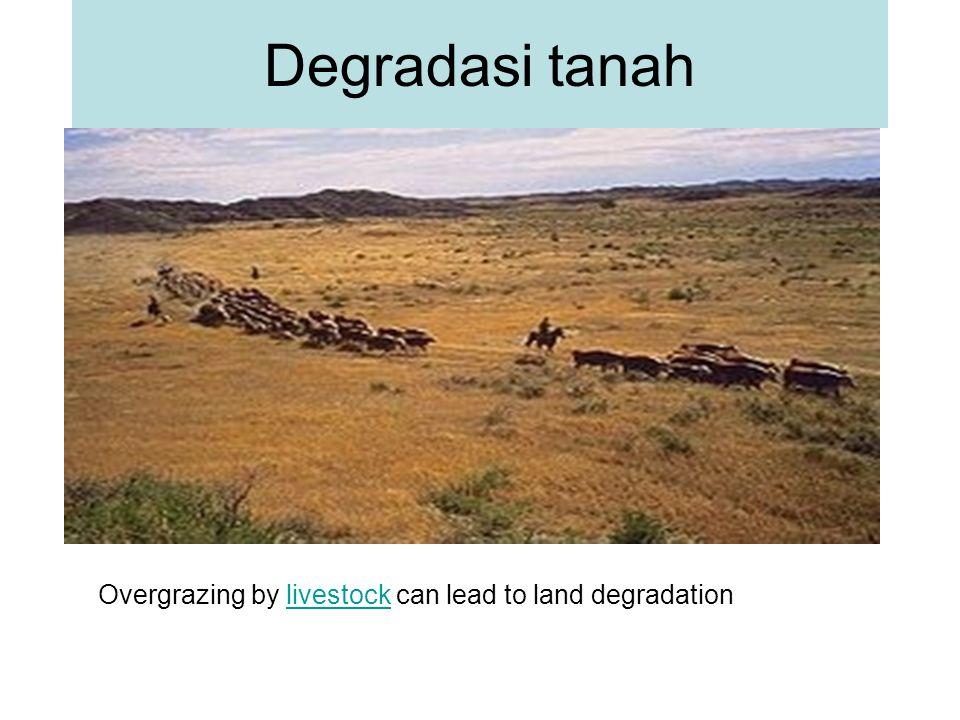 Degradasi lahan merupakan masalah global, terutama yang berhubungan dengan usaha pertanian.