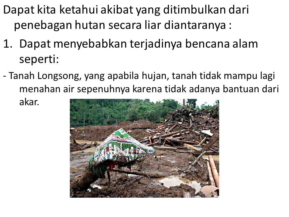 Dapat kita ketahui akibat yang ditimbulkan dari penebagan hutan secara liar diantaranya : 1.Dapat menyebabkan terjadinya bencana alam seperti: - Tanah