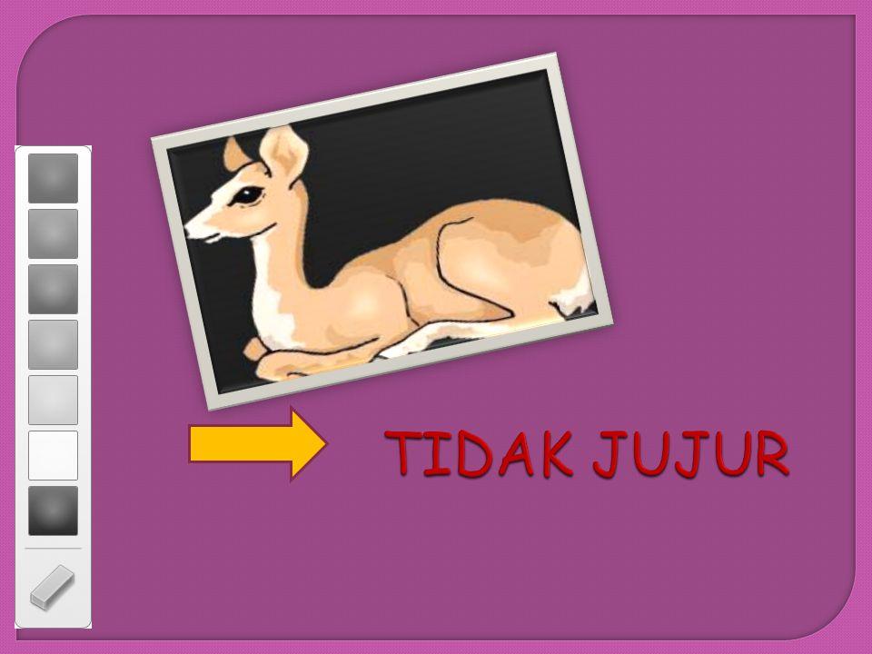 Tom and Jerry Bernard Bear Pinokio GAMBAR SIAPA INI ?...