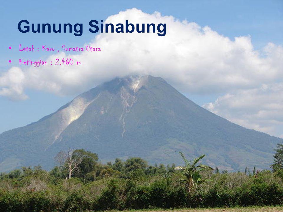 Gunung Sinabung Letak : Karo, Sumatra Utara Ketinggian : 2.460 m