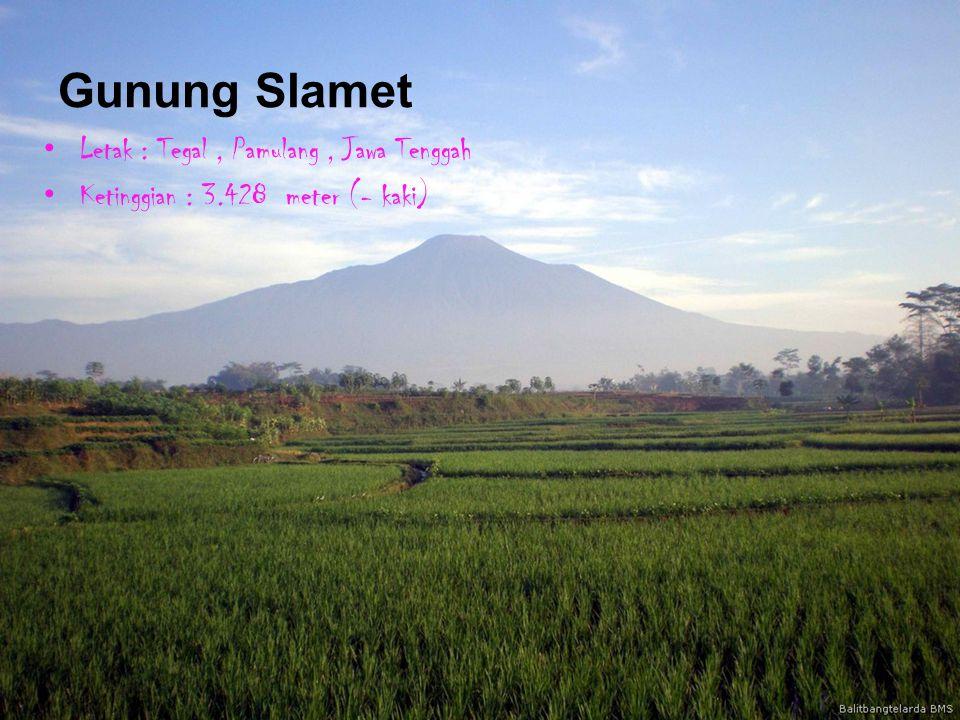 Gunung Slamet Letak : Tegal, Pamulang, Jawa Tenggah Ketinggian : 3.428 meter (- kaki)