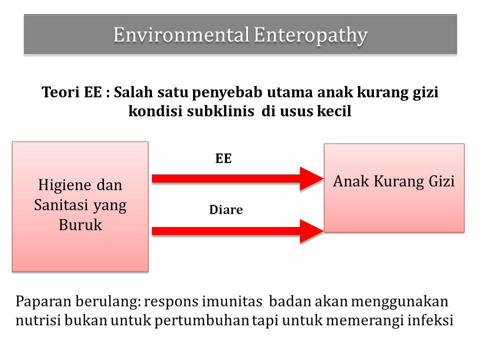 Environmental Enteropathy Teori EE : Salah satu penyebab utama anak kurang gizi kondisi subklinis di usus kecil Paparan berulang: respons imunitas badan akan menggunakan nutrisi bukan untuk pertumbuhan tapi untuk memerangi infeksi Higiene dan Sanitasi yang Buruk Anak Kurang Gizi EE Diare