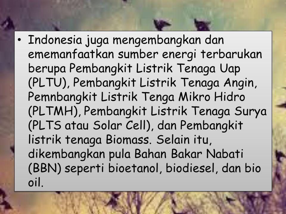 Indonesia juga mengembangkan dan ememanfaatkan sumber energi terbarukan berupa Pembangkit Listrik Tenaga Uap (PLTU), Pembangkit Listrik Tenaga Angin,