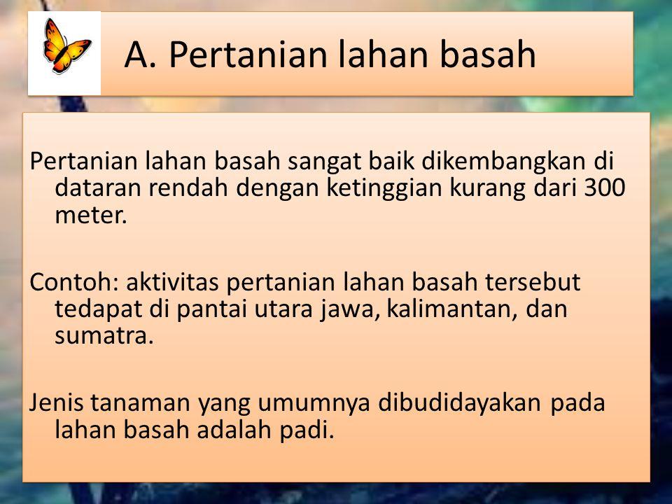 Daerah penghasil komoditas peternakan NoJenis KomoditasContoh Daerah Penghasil 1.AyamJawa, Bali 2.KerbauJawa, Aceh, Sulawesi 3.SapiSumatra, Madura, Bali, Nusa Tenggara Barat 4.KudaNusa Tenggara Timur (Sumba), dan Sumatra Barat 5.BabiSulawesi Utara (Mnahasa), Sumatra Utara (Tapanuli), Maluku, Bali, Jawa Barat (Karawang)