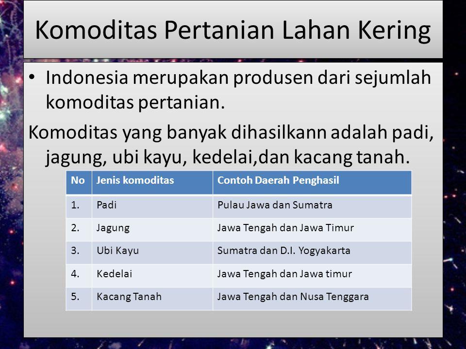 Komoditas Pertanian Lahan Kering Indonesia merupakan produsen dari sejumlah komoditas pertanian. Komoditas yang banyak dihasilkann adalah padi, jagung