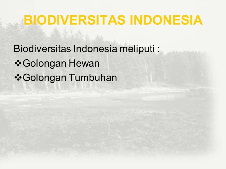 NILAI MANFAAT EKOLOGIS Nilai manfaat ekologis merupakan nilai-nilai langsung dari fungsi keanekaragaman hayati.Semakin tinggi keanekaragaman hayati di