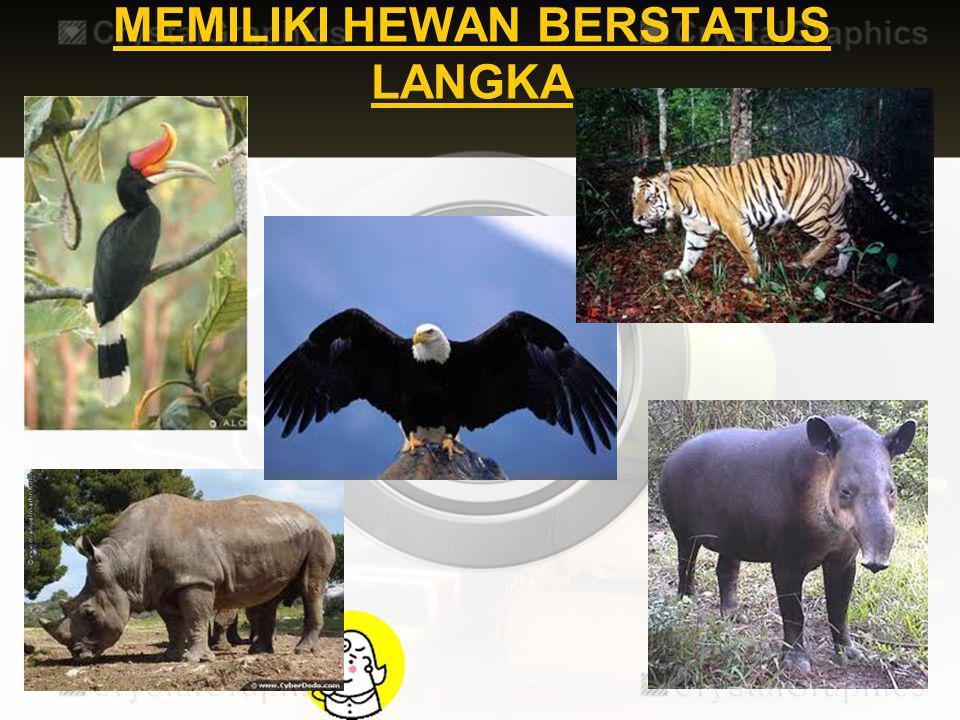 MEMILIKI TUMBUHAN DAN HEWAN BERSTATUS LANGKA Jenis – jenis hewan yang termasuk langka, antara lain badak sumatra, harimau sumatra, tapir, elang, rangk