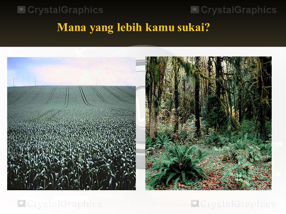 Biodiversitas Indonesia sangat unik kepulauan Indonesia dibagi atas 3 biogeografi besar Biogeografi Oriental Biogeografi Australia Biogeografi peralihan Garis Wallace Garis Webber