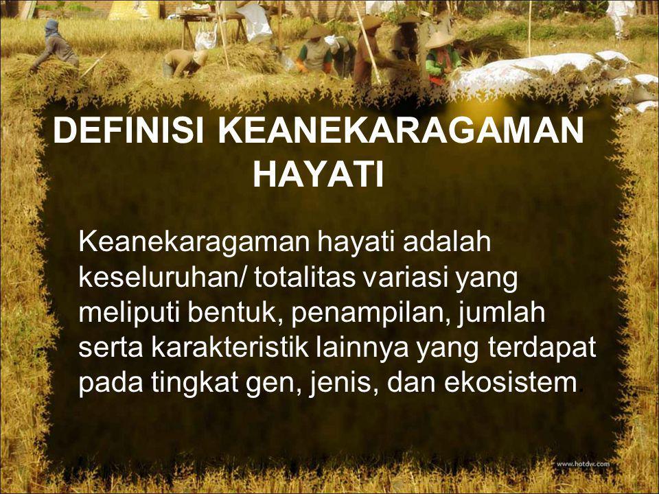 Jenis – Jenis Hewan Wilayah Oriental Hewan yang daerah persebarannya di wilayah Indonesia bagian barat memiliki ciri sebagai berikut.