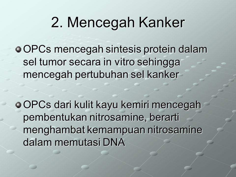 2. Mencegah Kanker OPCs mencegah sintesis protein dalam sel tumor secara in vitro sehingga mencegah pertubuhan sel kanker OPCs dari kulit kayu kemiri