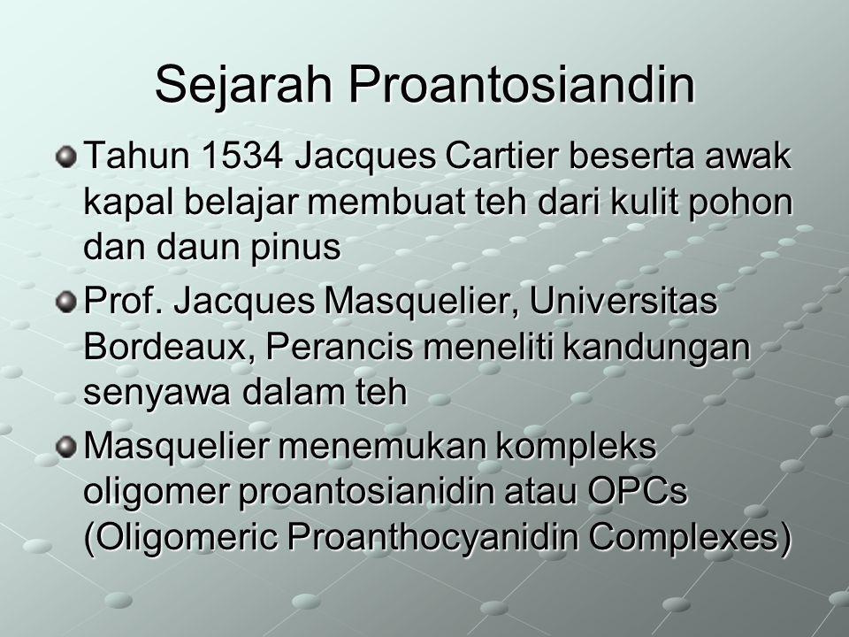 Sejarah Proantosiandin Tahun 1534 Jacques Cartier beserta awak kapal belajar membuat teh dari kulit pohon dan daun pinus Prof. Jacques Masquelier, Uni