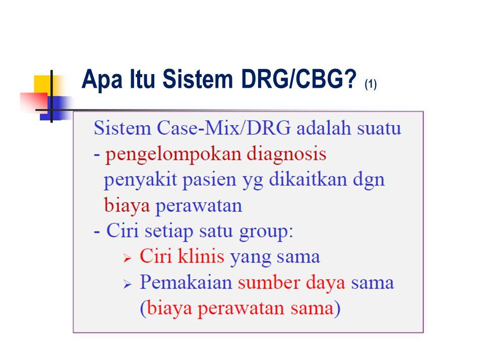 Apa Itu Sistem DRG/CBG? (1)