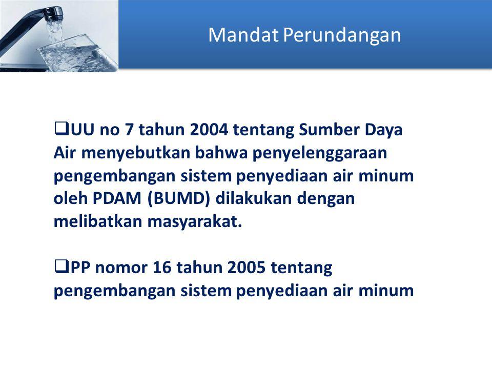 Mandat Perundangan  UU no 7 tahun 2004 tentang Sumber Daya Air menyebutkan bahwa penyelenggaraan pengembangan sistem penyediaan air minum oleh PDAM (