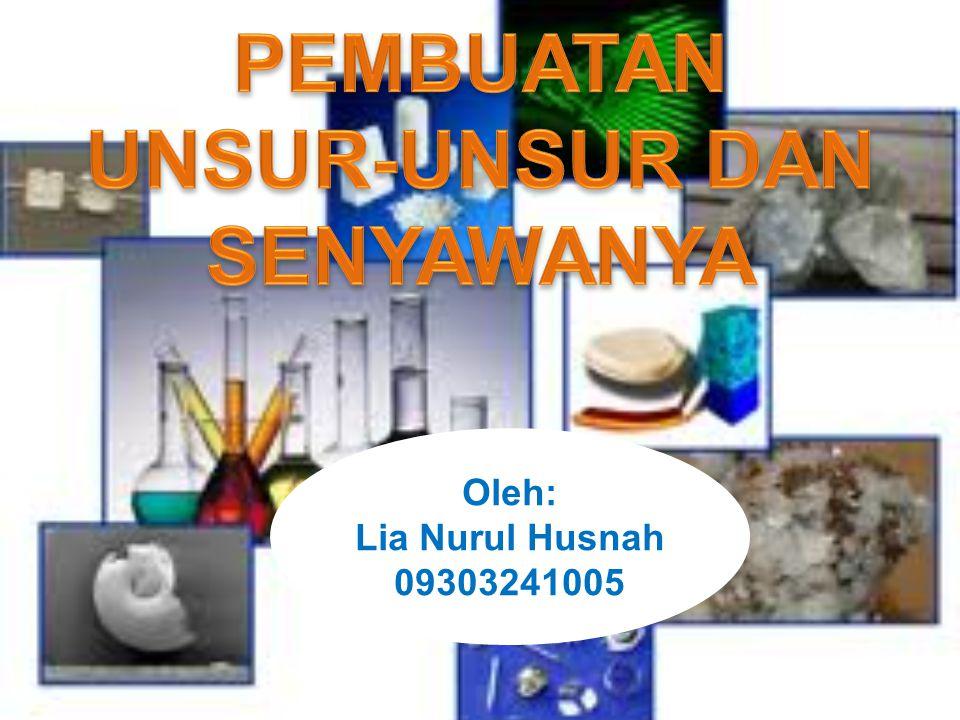 Oleh: Lia Nurul Husnah 09303241005