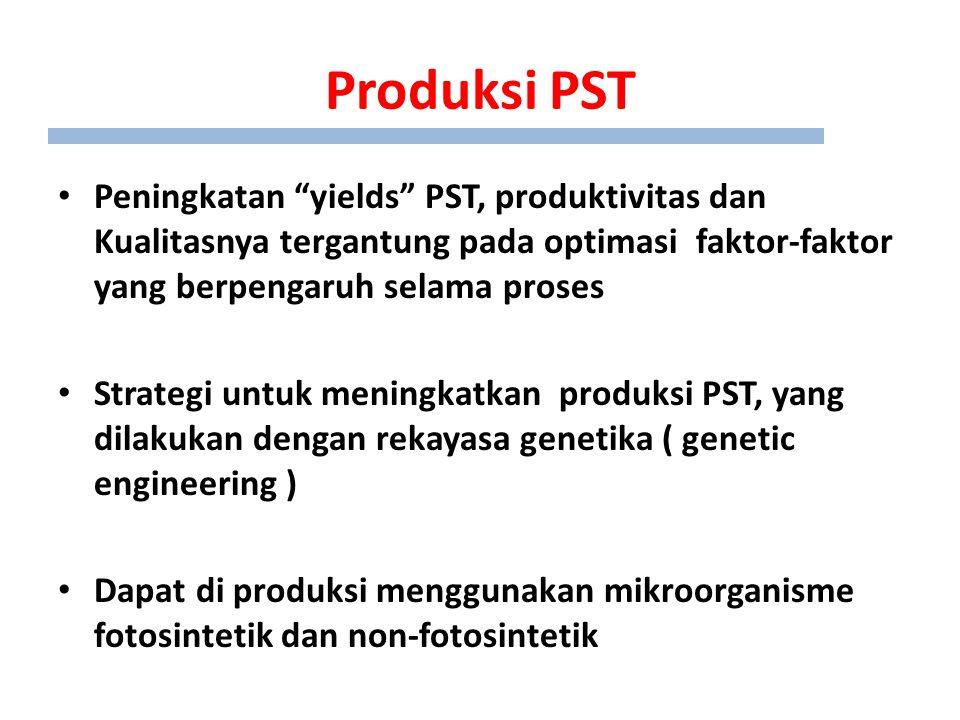 Produksi PST Peningkatan yields PST, produktivitas dan Kualitasnya tergantung pada optimasi faktor-faktor yang berpengaruh selama proses Strategi untuk meningkatkan produksi PST, yang dilakukan dengan rekayasa genetika ( genetic engineering ) Dapat di produksi menggunakan mikroorganisme fotosintetik dan non-fotosintetik