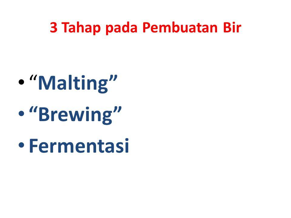 3 Tahap pada Pembuatan Bir Malting Brewing Fermentasi