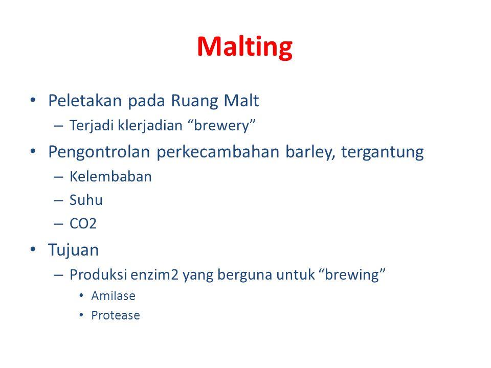 Malting Peletakan pada Ruang Malt – Terjadi klerjadian brewery Pengontrolan perkecambahan barley, tergantung – Kelembaban – Suhu – CO2 Tujuan – Produksi enzim2 yang berguna untuk brewing Amilase Protease