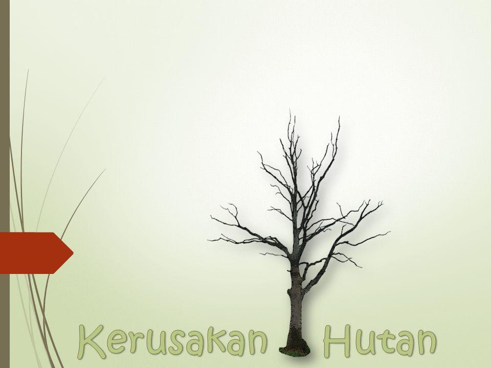 Picture Berita Faktor-faktor Definisi Hutan Manfaat hutan Penyebab Solusi Sumber Kerusakan Hutan Kerusakan hutan adalah berkurangnya luasan areal hutan karena kerusakan ekosistem hutan yang sering disebut degradasi hutan ditambah juga penggundulan dan alih fungsi lahan hutan atau istilahnya deforestasi.