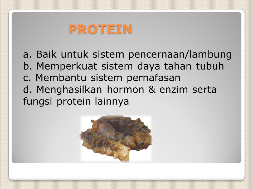 PROTEIN a. Baik untuk sistem pencernaan/lambung b. Memperkuat sistem daya tahan tubuh c. Membantu sistem pernafasan d. Menghasilkan hormon & enzim ser