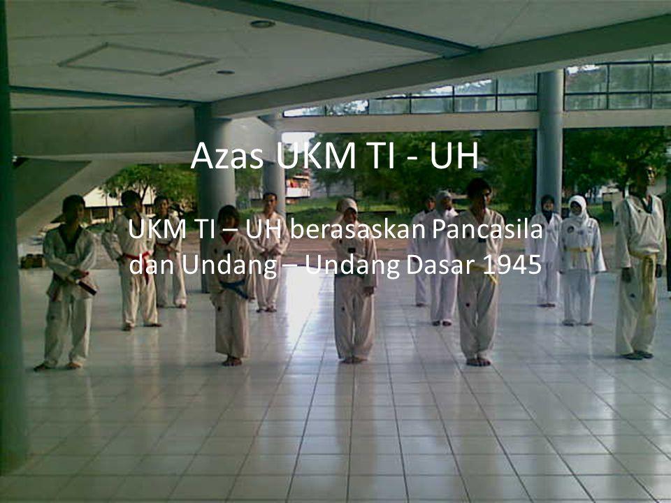 PENGURUS UKM TI – UH PERIODE 2010 -2011 Pengurus UKM TI UH terdiri dari : Ketua umum :Muth Mainnah A.
