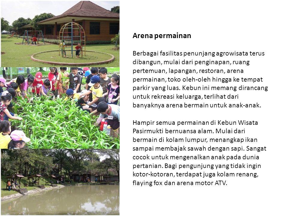 Arena permainan Berbagai fasilitas penunjang agrowisata terus dibangun, mulai dari penginapan, ruang pertemuan, lapangan, restoran, arena permainan, t