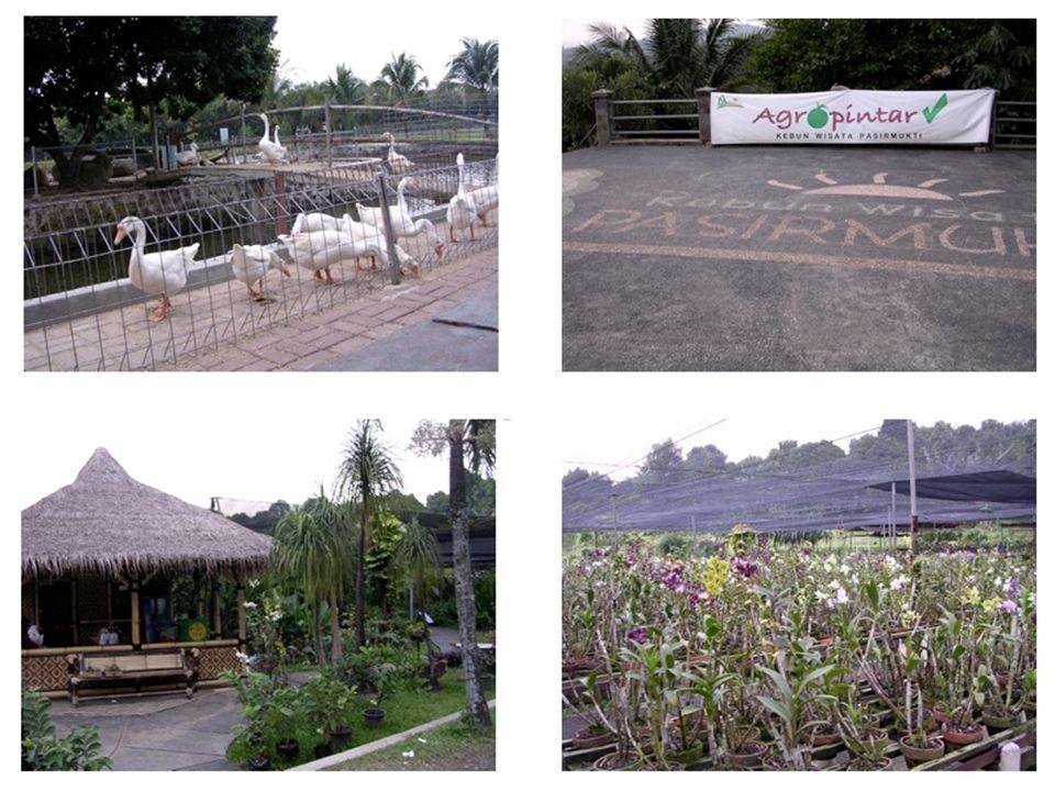 HTM - etc Nama: Kebun Wisata Pasirmukti Alamat: Jl.